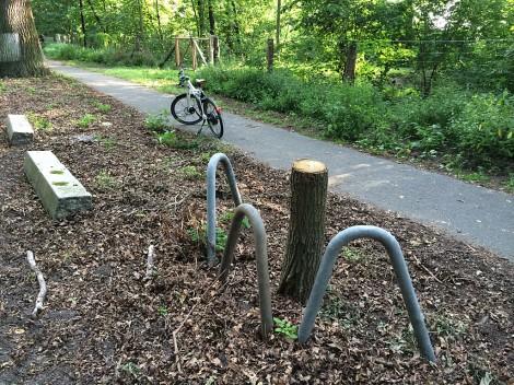 Berlin Havelchaussee: Der Baumschutz ist noch da - wo ist der Baum?