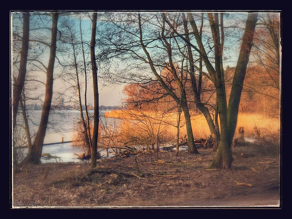 Erste Frühjahrssonne am Wannseeufer
